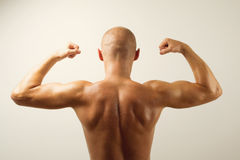 Rear view of muscular man showing his back muscles Stock Photo