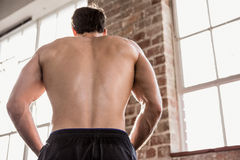 Rear view of a muscular man showing his body Stock Image