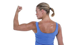 Rear view of muscular woman flexing muscles. On white background Stock Images