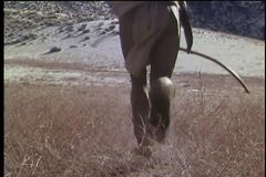 Rear view of a Native American man running with bow and arrow in field stock video footage