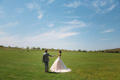 Rear view, newlyweds are walking along the green field of the golf club on a wedding day. The bride and groom in wedding royalty free stock images