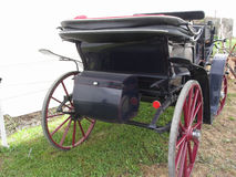 Rear view of old-fashioned horse carriage on green grass Stock Photography