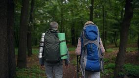 Rear view of a pleasant aged couple walking in the forest. Active leisure time. Rear view of a pleasant aged couple walking in the forest with backpacks on their stock footage