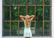 Rear view portrait of young romantic woman in a botanical garden.  Royalty Free Stock Images
