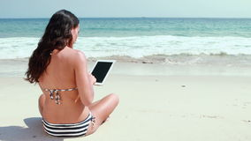 Rear view of pretty brunette using tablet pc at the beach. On a sunny day stock video footage