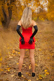 Rear view of pretty young girl in red dress. In autumn wood Royalty Free Stock Photography