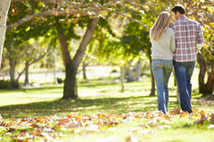 Rear View Of Romantic Couple Walking Through Autumn Woodland Stock Photography