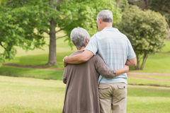 Rear view of senior couple with arms around at park Stock Images