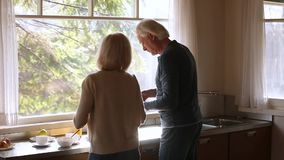 Rear view at senior couple enjoying cooking together in kitchen stock video footage