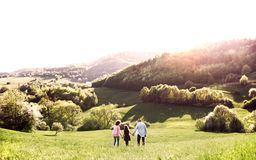 Rear view of senior couple with granddaughter on a walk outside in spring nature. stock photography