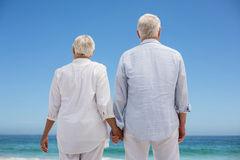 Rear view of a senior couple holding hands Royalty Free Stock Image