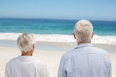 Rear view of a senior couple holding hands Stock Photography