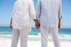 Rear view of a senior couple holding hands Stock Photos