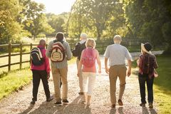 Rear View Of Senior Friends Hiking In Countryside stock image