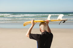 Rear view of senior man holding surfboard on head at beach. During sunny day Stock Images