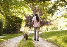 Rear View Of Senior Man Walking With Pet Bulldog In Countryside stock photo