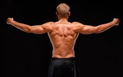 Rear view of sexy muscular sportsman with arms stretched out. Back view of sexy male shirtless muscular sportsman with raised hands demonstrating back, biceps Stock Photos