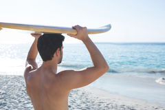 Rear view of shirtless man carrying surfboard at beach Stock Photography