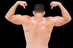 Rear view of a shirtless muscular man flexing muscles Royalty Free Stock Image