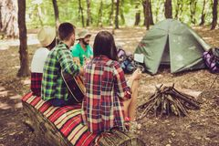 Rear view shot of two couples hiking together, sitting near the. Fire place in a camp with a guitar, tent, blanket, backpacks stock photo