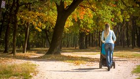 Rear view shot of young woman with baby pram walking under autumn trees in park. Rear view photo of young woman with baby pram walking under autumn trees in park Royalty Free Stock Photo