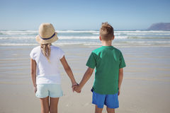 Rear view of siblings holding hands on shore at beach Stock Photography