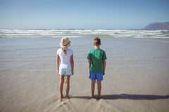 Rear view of siblings standing at beach Royalty Free Stock Photos