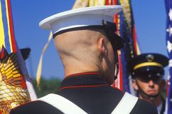Rear View of Soldier, Desert Storm Victory Parade, Washington, D.C. Royalty Free Stock Photo