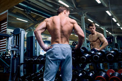 Rear view of a sporty man with muscles in the gym Royalty Free Stock Photography