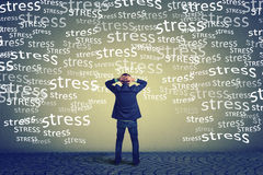 Rear view of stressed business man standing in front of a wall hands on head Royalty Free Stock Image