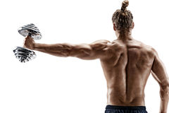 Rear view of strong man lifting dumbbell. Stock Images
