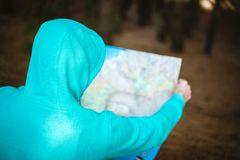 Rear view of traveler in blue hoodie checking the map while resting in pine forest royalty free stock image