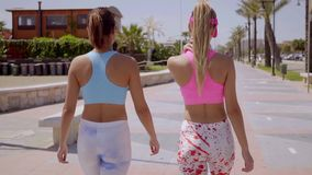 Rear view of two sexy shapely young women. In colorful trendy tights or leggings walking along a promenade side by side stock video footage