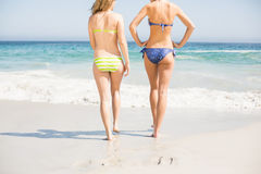 Rear view of two women walking on the beach stock image