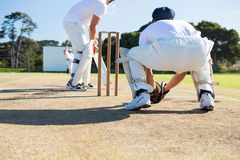 Rear view of wicket keeper crouching by stumps during match. On sunny day stock image