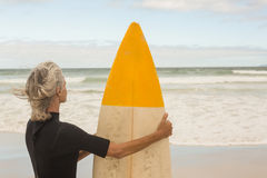 Rear view of woman carrying surfboard while standing against shore. At beach stock photography