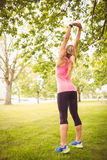 Rear view of woman exercising with arms raised Royalty Free Stock Photo