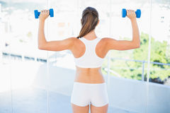 Rear view of woman lifting up dumbbells Stock Photography