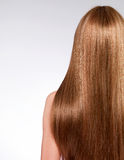 Rear view  of the woman with long  hair Stock Photography