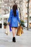 Rear view of woman  with shopping bags Stock Image