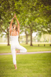 Rear view of woman standing in tree pose Royalty Free Stock Photos