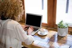 Rear view of woman using laptop in coffee shop Royalty Free Stock Photo