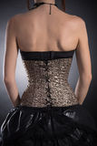 Rear view of woman wearing golden corset Stock Photography