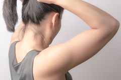 Rear view of women tightening the hair, lifestyle concept. Rear view of woman tightening the hair, lifestyle concept Royalty Free Stock Image