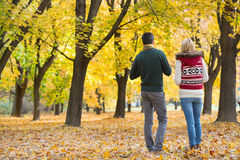 Rear view of young couple walking in park during autumn Royalty Free Stock Image