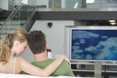 Rear view of young couple watching television in living room Stock Image