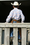Rear view of young cowboy stock photography