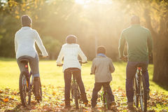 Rear view of a young family doing a bike ride royalty free stock photos