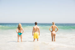 Rear view of young friends standing on the beach Royalty Free Stock Photography