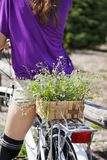 Rear view of young girl on bike with basket of flowers. Royalty Free Stock Image